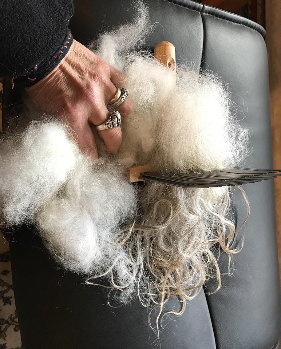 hairlashedon